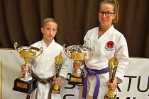 """Sportovní projekt s názvem """"Karate je radost"""" přilákal do staré sportovní haly takřka stovku mladých a hlavně nadšených sportovců."""