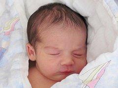 Mamince Lence Fabové z České Lípy se 28. března v 0:29 hod. narodil syn Dominik Fabo. Měřil 47 cm a vážil 3,04 kg.
