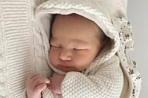 Rodičům Kamile a Janovi Bláhovým se v pátek 22. ledna v 17:03 hodin narodil syn Elias Bláha. Měřil 51 cm a vážil 3,66 kg. Doma se na něj těšil bráška Adam.
