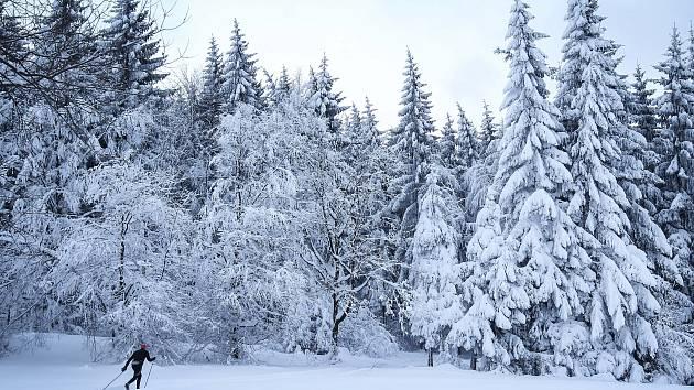 Běžkařská sezona na Novoborsku odstartovala.