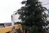 V pátek 13. 11. 2020 vztyčili v Dubé před radnicí svůj letošní vánoční strom.