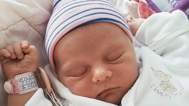 Rodičům Christině Krebsové a Davidu Wildmanovi ze Skalice u České Lípy se ve středu 9. června v 18:35 hodin narodila dcera Anna Wildmanová. Měřila 50 cm a vážila 3,19 kg.