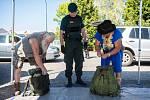 Celní správa kontroluje automobily mířící na festival Mácháč, zda lidé nevezou drogy.