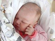 Rodičům Tereze Vosecké a Petrovi Drahému z České Lípy se v úterý 30. října ve 23:55 hodin narodila dcera Laura Vosecká. Měřila 50 cm a vážila 3,64 kg.
