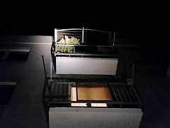 K rostlině na balkóně ve třetím patře domu se zloděj rozhodl dostat ze střechy.