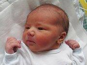 Mamince Ivaně Pertlové z České Lípy se v neděli 13. listopadu ve 14:18 hodin narodil syn Oliver Pertl. Měřil 51 cm a vážil 3,50 kg.