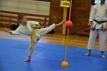 Sport Relax pořádal pohár mladých bojovníků.