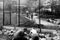Zoopark plánuje, že na podzim udělá výstavu z historických snímků od návštěvníků.