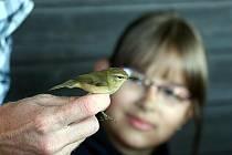 Sedmačtyřicet ptáčků různých druhů ztratilo a následně znovu získalo svobodu. Děti i dospělí měli možnost si je z blízka prohlédnout a něco zajímavého se o nich dozvědět. Hladit peří ovšem příliš nesměli, protože jsou malí ptáci choulostiví.