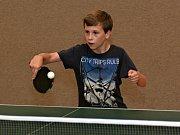 Ve Vyškově vzniklo nové mládežnické centrum stolního tenisu pod hlavičkou KTS Dragon Vyškov.