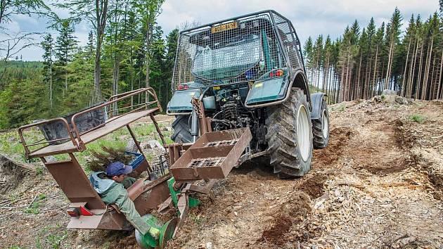 Na jaře a na podzim zasadí lesníci přes třiadvacet milionů sazenic.