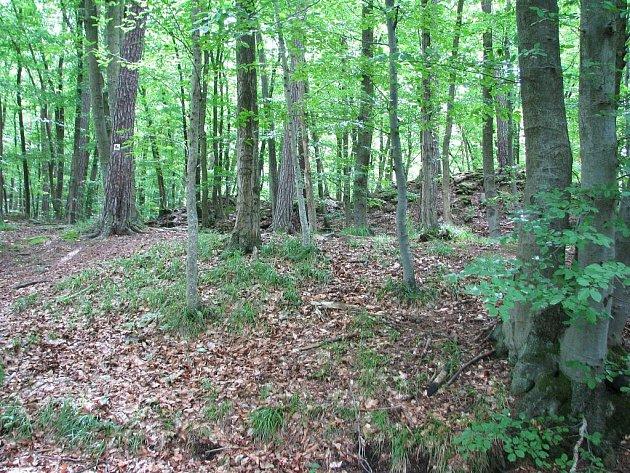 Zřícenina tajemného hradu Kuchlova se tyčí nad Malou Hanou v lese mezi Rychtářovem a Ruprechtovem. Vede k němu i cyklostezka.
