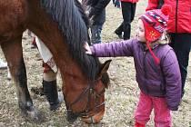 Zahradnickou výstavu ve slavkovském zámeckém parku v sobotu zpestří kostýmovaná vyjížďka na koních. Jinak si kromě květin a sazenic můžou zájemci nakoupit i třeba keramiku, bižuterii nebo dřevěné hračky.