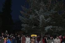 Vánoční strom v Pustiměři.