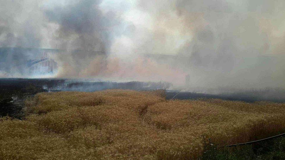 Plameny zničily úrodu pšenice na deseti hektarech v Kobeřicích u Brna.