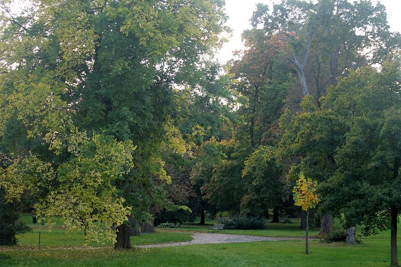 Letní teploty ve Slavkově výrazně snižuje především zámecký park, další rozšiřování zeleně bude do budoucna jednou z priorit.