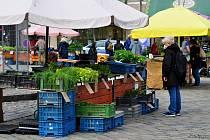 Od pondělí 12. dubna mohou lidé znovu nakupovat na brněnském Zelném trhu.