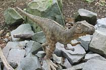 Návštěvníci obdivují modely prehistorických zvířat v životních velikostech. Některé modely jsou navíc pohyblivé a ozvučené.