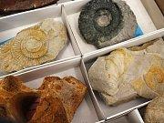Minerály, drahé kameny, šperky a další dekorace si mohli návštěvníci burzy v Muzeu Vyškovska buď jen prohlédnout, nebo i koupit.