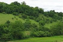 Pohled na přírodní rezervaci Rašovický zlom – Chobot. Ilustrační fotografie.