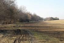 V údolí mezi Hamiltony a Lhotou má vzniknout cyklostezka.