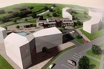 Několik studentů brněnské fakulty architektury zpracovalo ve svých závěrečných pracích nástin toho, jak by za několik let mohl areál po prádelně sloužit veřejnosti. Vedle sportoviště je jedním z návrhů i výstavba nových bytů.