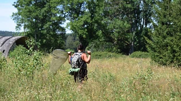 O víkendu 12. a 13. září mohou zájemci pomoci přírodě nedaleko Slavkova u Brna.Ilustrační snímek.