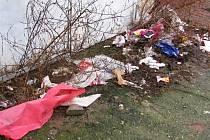 Zvýšený výskyt odpadků v Pivovarské ulici přisuzují její obyvatelé novým nájemníkům, kteří se sem přistěhovali ze zbouraného domu v Albrechtově ulici.