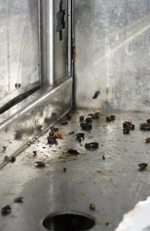 Státní zemědělská a potravinářská inspekce letos zahájila správní řízení se šesti podniky. Nejhůř vposlední době dopadli všaratické výrobně lahůdek. Uzavřená byla devět dní.