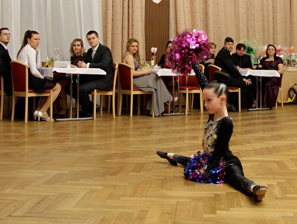 Šestnáctý benefiční ples ve Vyškově bavil i pomáhal. Výtěžek putuje na hřiště pro děti, které využívají na jízdárně koně k terapii.
