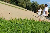 Do Slavkova se sjelo šestačtyřicet tříčlenných týmů a to i z Německa nebo Slovenska. Slavkovský pétanqueový turnaj patří k jedním z nejstarších a nejprestižnějších v České republice.