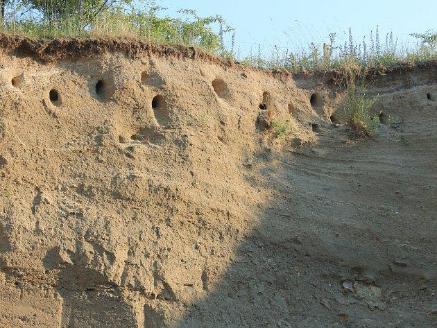 Těžba písku v Němčanech po 100 letech končí.