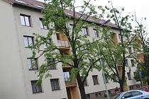 Vyškovské sídliště Palánek.