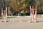 Jezdci měli při shození překážky právo na jeden opravný pokus.