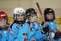 Turnaj talentovaných hokejistů z druhých tříd ve Vyškově.