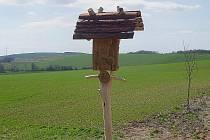 Zloděj ukradl dřevořezbu patrona rolníků.