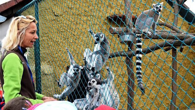 Zoo park ve Vyškově. Ilustrační foto