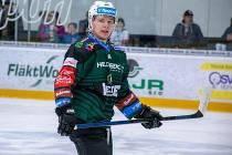 Mladý hokejový útočník s vyškovskými kořeny Matěj Zabloudil si chce vybojovat stabilní místo v sestavě extraligové Energie Karlovy Vary.