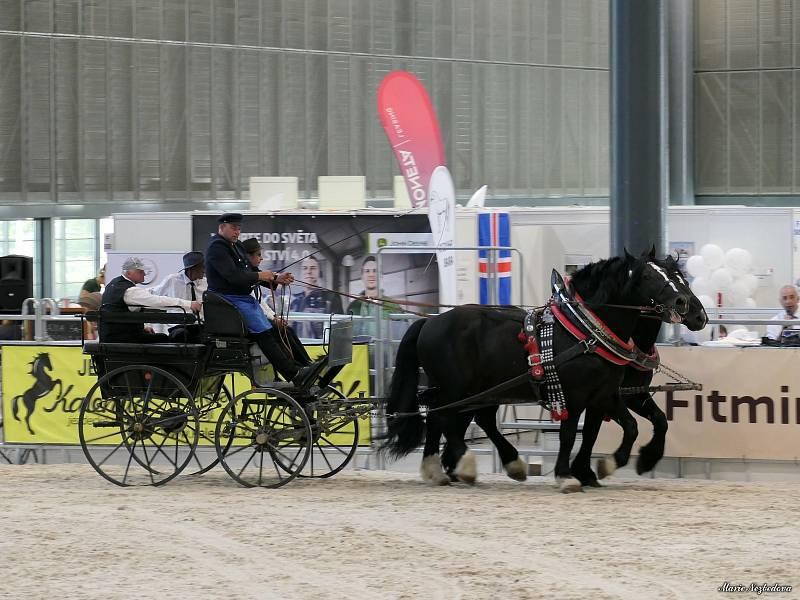 Ve dnech 5. až 8. září se na Brněnském výstavišti konal veletrh Animal Tech a současně Národní výstava hospodářských zvířat.