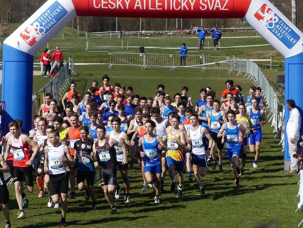 Mladí běžci AK AHA Vyškov na  MČR v krosu v Táboře.