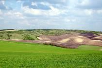 Jižní svah kopce Větrník tvoří národní přírodní rezervaci Větrníky, která se nachází poblíž obce Letonice na Vyškovsku. Chráněné území je významná stepní lokalita, kde žije řada chráněných druhů rostlin.