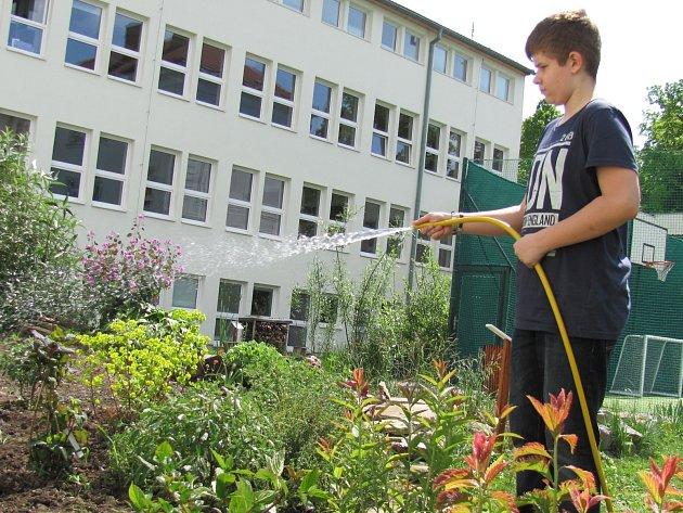 Ředitel základní školy Komenského ve Slavkově u Brna Vladimír Soukop novou zahradu považuje za návrat ke starým praktikám. Podle něj byly školní zahrady využívané ke každodenní výuce v devatenáctém století zcela běžně.