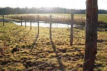 Ve Studnici dělníci budují nový rybník. Nádrž ponese název Vápenný žlab.