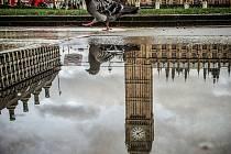 Momentka z Parliament Square 31. ledna v Londýně.