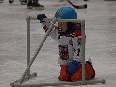 Děti od čtyř do osmi let, si ve Vyškově vyzkoušely jaké je to být hokejistou.