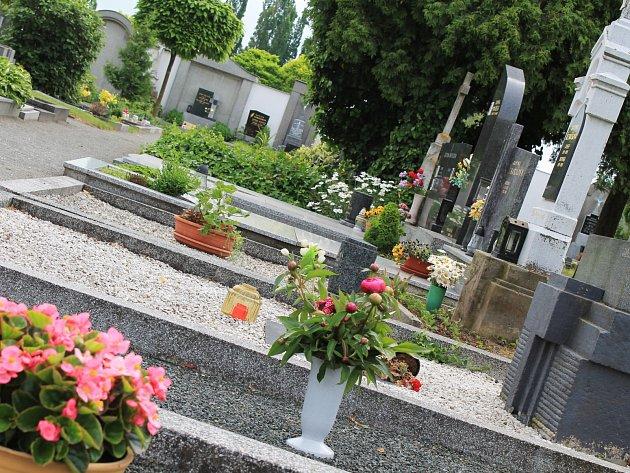 Vyškovský hřbitov.
