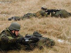 Vojáci ze 74. lehkého motorizovaného praporu plukovníka Bohuslava Malečka v Bučovicích se aktuálně účastní cvičení Training Bridge 2017 v Litvě. Jde o součást plánované výcvikové aktivity zemí Visegradské skupiny a pobaltských států v letošním roce.