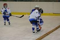 Hokejový tým prvňáků HC Žraloci Vyškov čekají tuhé boje na domácím mistrovství České republiky. Úspěchem by pro ně byla podle trenéra Igora Apostolidise účast ve čtvrtfinále.