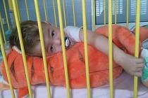 Záchranáři Jihomoravského kraje uspořádají na pomoc rodině malého Davídka sbírku.