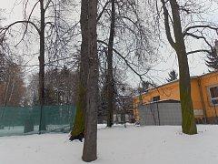 Šestnáct stromů v parku Smetanovy sady navržených ke kácení nakonec k zemi nepůjde. Zasloužilo se o to svými připomínkami sdružení Zelený Vyškov.